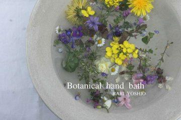 Botanical hand bath